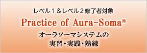 「レベル1&レベル2修了者対象」 Practice of Aura-Soma in your daily life(オーラソーマシステムの実習・実践・熟練)