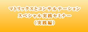マトリックスとコンサルテーション スペシャル実践セミナー(実践編
